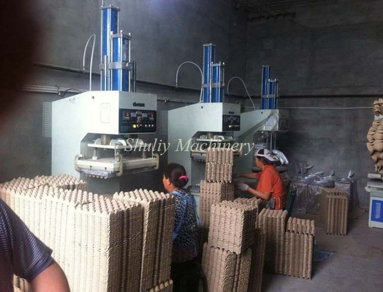 Egg Tray Packing Equipment