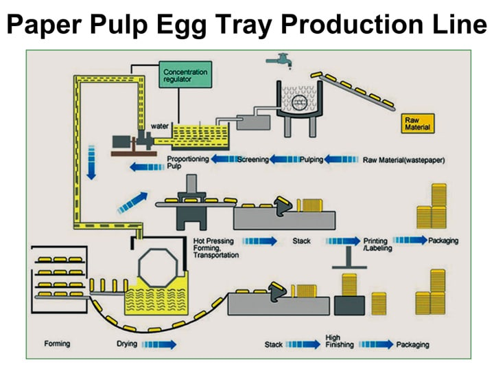 paper pulp egg tray production line