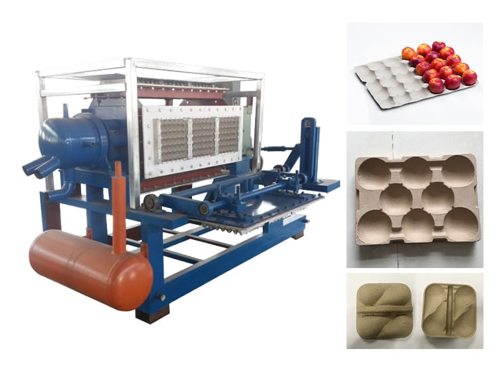 paper apple tray making machine for sale